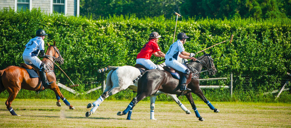 polo_hamptons_action